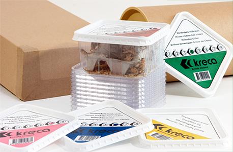 Insecten Groothandel Producten
